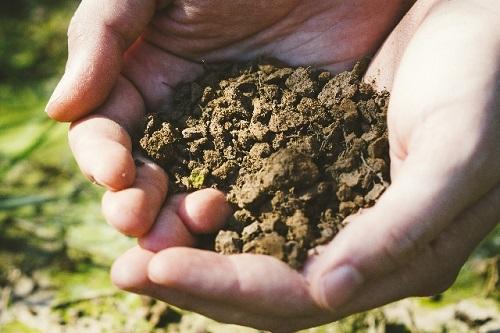 光合成細菌の農業利用をお考えの方、有機物の肥料をお探しの方