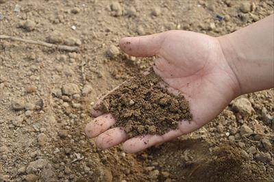 農業用の肥料や連作障害の対策になる有機物など様々な種類の農業資材を販売