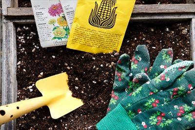 家庭菜園から農業利用まで土づくりに欠かせない知識!発酵と腐敗の違い